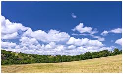 Životní prostředí a krajinotvorba